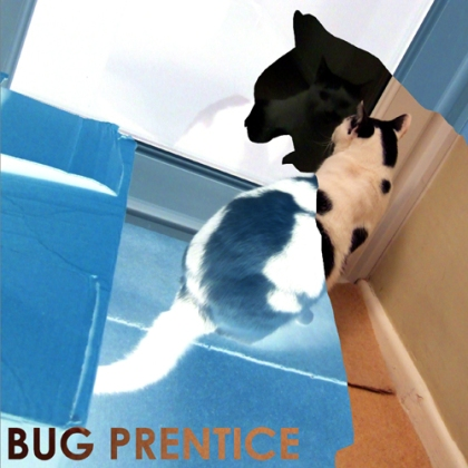 Bug Prentice